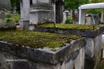 Père Lachaise Cemetery _03