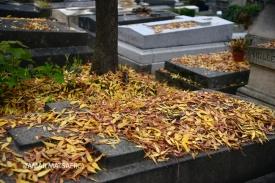 Père Lachaise Cemetery _14
