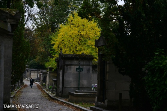 Père Lachaise Cemetery _20